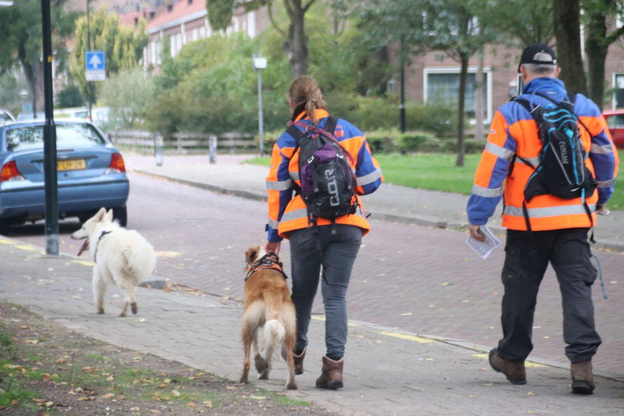 De speurhonden van RHWW in Duiven doorzoeken het Zuiderpark in Apeldoorn. Sinds enkele dagen wordt de 40-jarige Zoran vermist.