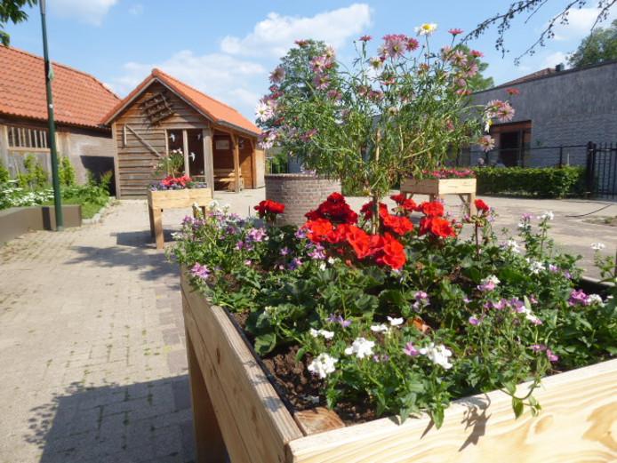 De boerenschuur en waterput met nieuwe plantenbakken vol bloeiende planten. Ze vormen het sluitstuk voor de Dungense Belevingstuin achter de Litserborg in Den Dungen.