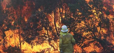 Bosbranden Australië leggen dertig huizen in de as: 'Waarschijnlijk aangestoken'