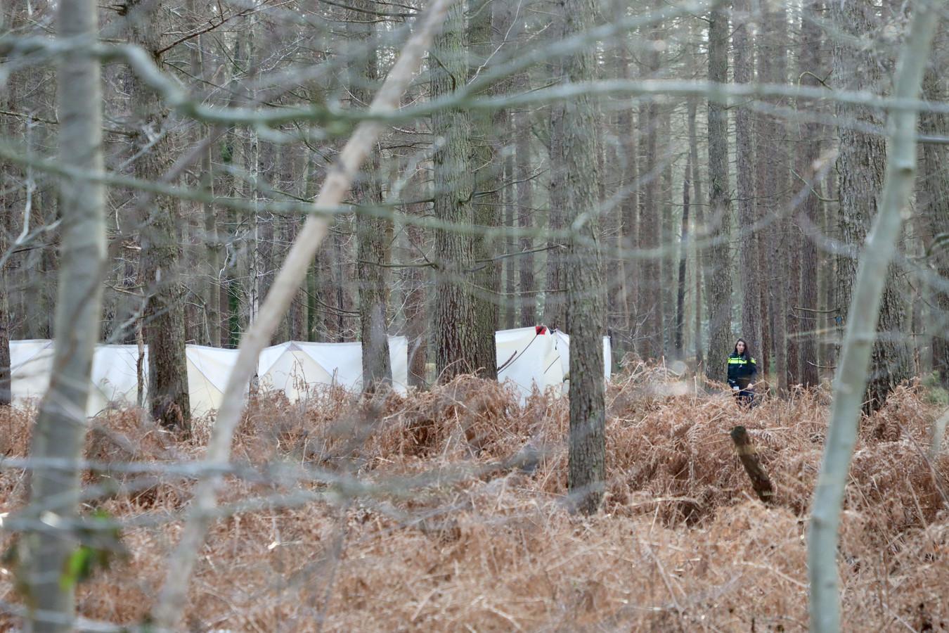 Witte schermen in het bos bij Denekamp waar een lichaam is gevonden.