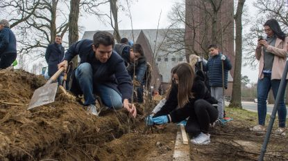 """Matteo Simoni helpt Eisden-Tuinwijk aan titel Unesco Werelderfgoed: """"Plant een haag en maak de cité nog mooier"""""""