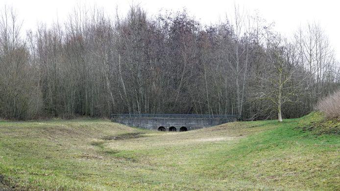 Natuurgebied De Vlasakker op Hoog Kortrijk, hier op een archiefbeeld.