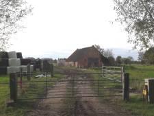 Na acht jaar praten en zoeken komt er géén nieuwe plek voor boer in Soest, tot opluchting van de omwonenden