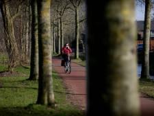 Dordtse gemeenteraad wil nóg meer nieuwe bomen in de stad
