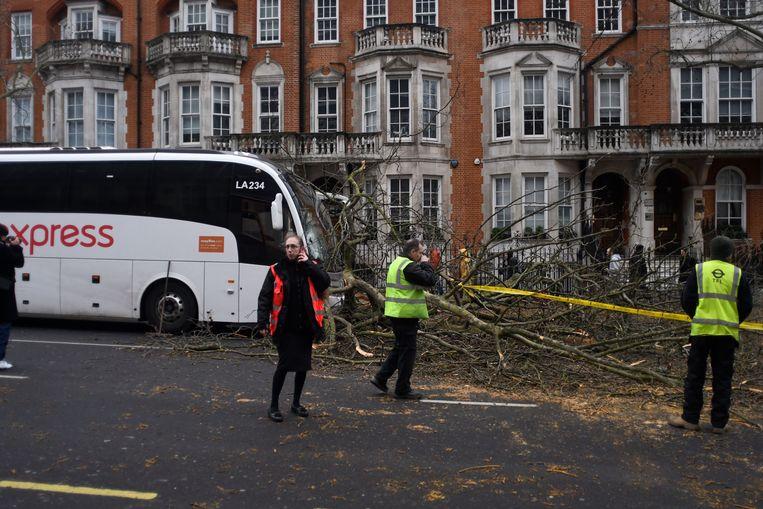 Bomen gingen tegen de vlakte in het centrum van Londen. Beeld Photo News