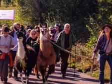 Klimaatpelgrims trekken op tocht van Polen naar Glasgow door Twente