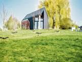 """Binnenkijken in de ecologische hoeve van keramiste Frauke:""""De muren van leem regelen de vochtigheid. We voelen dat dit een gezond huis is"""""""