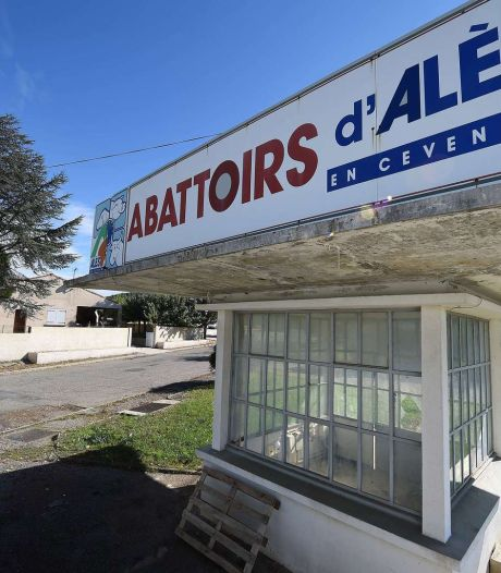 Enquête suite à des mauvais traitements dans un abattoir en France