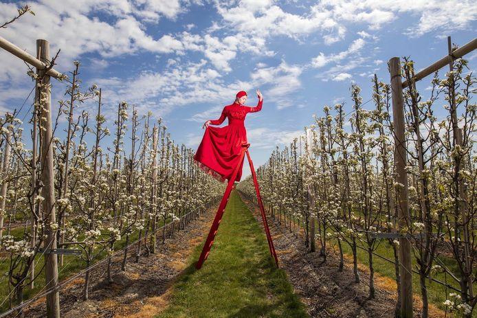 Werk van Rem van den Bosch voor zijn tentoonstelling #Water waarmee hij het bewustzijn van mensen voor een watersnoodramp wil vergroten. De dame op de foto geeft met haar hand aan hoe hoog het water komt in de boomgaard bij een dijkdoorbraak.