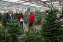 Om de donkere dagen geïsoleerd en toch gezellig door te komen, worden er al veel kerstbomen verkocht.