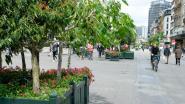 Bloembakken kleuren voetgangerszone