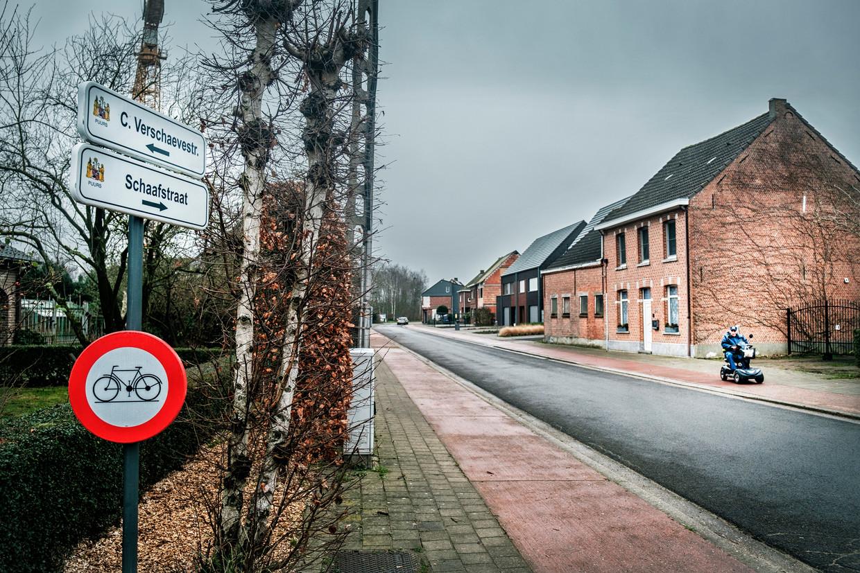 De Cyriel Verschaevestraat in Puurs-Sint-Amands.