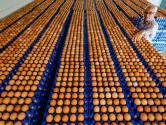 700.000 besmette eieren in Verenigd Koninkrijk verspreid
