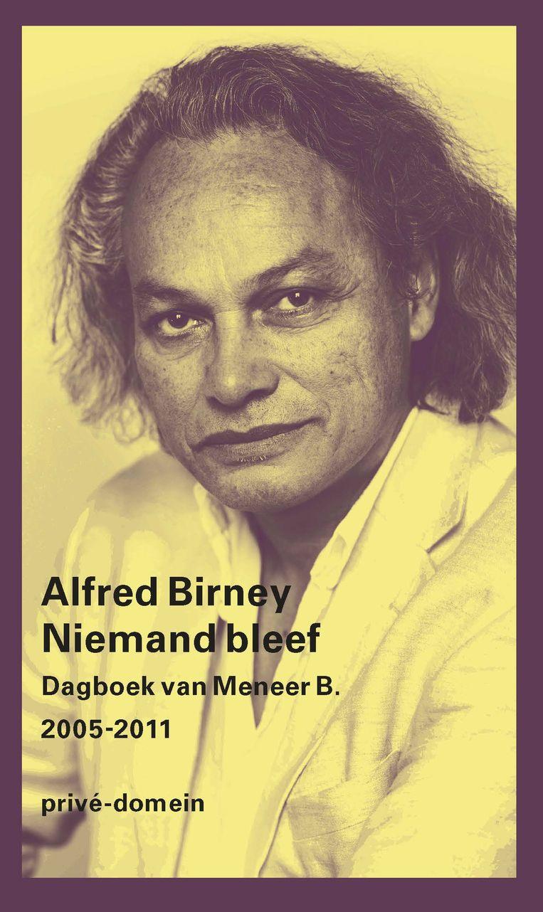 Alfred Birney: Niemand bleef Beeld