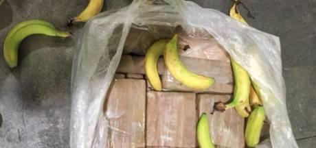 Nóg meer cocaïne tussen bananen in haven Vlissingen: straatwaarde 3 miljoen euro