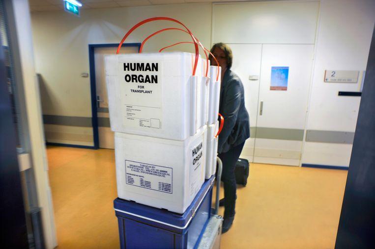 Koelboxen voor het vervoer van donororganen.  Beeld Flip Franssen / HH
