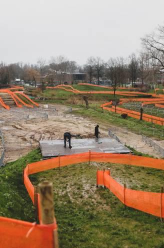 Speeltuin voor Wout: waarom een vierde tricolore Van Aert nooit mag ontglippen