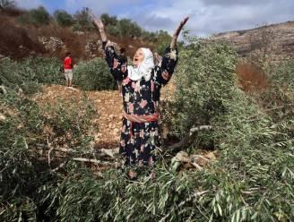"""""""Onafhankelijke Palestijnse staat is een illusie"""""""