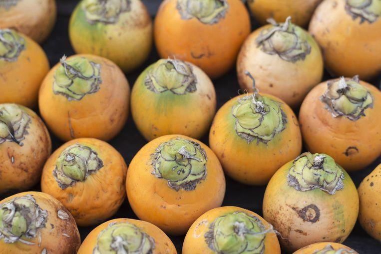 Rijpe betelnoten (of arekanoten): het kauwen van de betelnoot is kankerverwekkend. Beeld THINKSTOCK