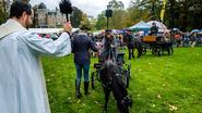 Paarden (en twee ezels) gewijd in hondenweer