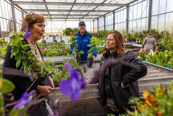 Liza van tuincentrum Van Krugten uit Drunen, in gesprek me t klant Arna. Cor heeft nog twee extra klimhortensia's voor haar gepakt.