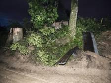Toits envolés, arbres arrachés, caves inondées