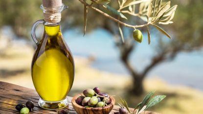 Italiaanse politie confisqueert 16 ton valse extra vierge olijfolie