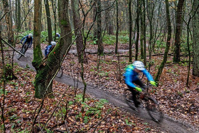 Mountainbikers op de speciale mtb-route in de bossen van het Rijk van Nijmegen, waar ze wel mogen komen.