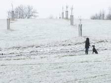 Dik pak sneeuw in Zuid-Limburg, tien centimeter in de heuvels