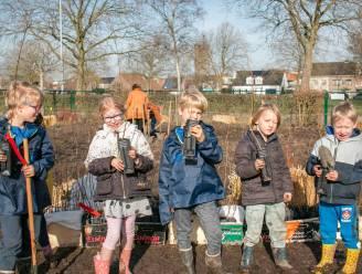 """""""Kinderen opnieuw verbinden met hun natuurlijke omgeving"""": basisschool De Ark legt eerste 'tiny forest' aan"""