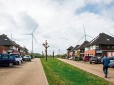 Geen windturbineliefde tussen Landgoed Hemmen en Betuwewind