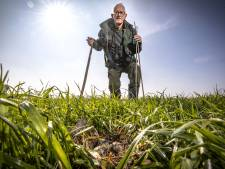 Johan uit Rossum heeft reddingsplan voor de kievit: 'Gladgestreken groene lakens bieden geen dekking'