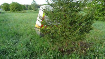 Plant een boom en omzeil de snelheidscontrole