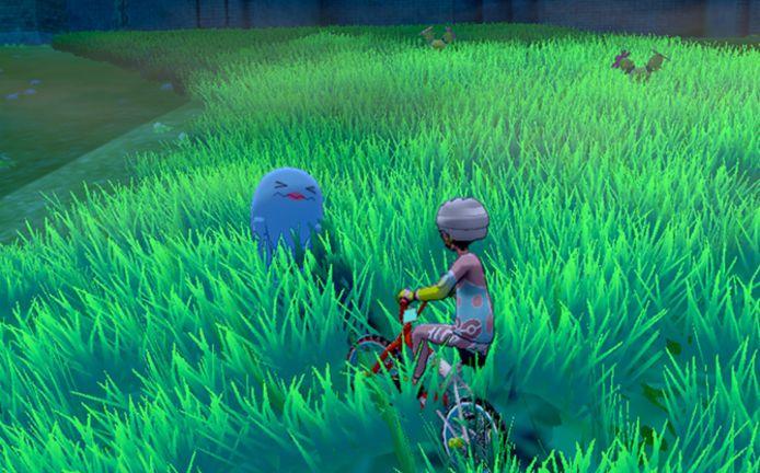 Op fietstocht in de Wild Area