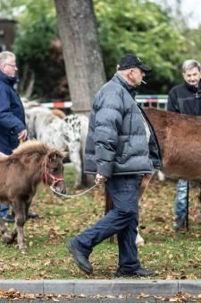 Door corona, geld en dierenactivisten ook dit jaar geen Wijchense Paardenmarkt