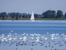'Nieuw' Nationaal Park bij Haringvliet, maar geen extra natuur