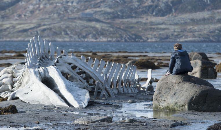 Beeld uit de Russische film Leviathan van regisseur Andrej Zvjagintsev. Beeld Lumière