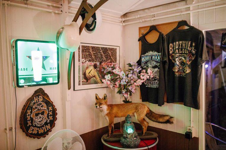 De opgezette vos, die toen hij nog leefde zich geregeld liet zien. De vaste klanten kenden hem Beeld Marc Driessen
