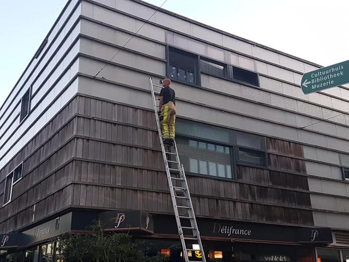 De brandweer kwam er aan te pas om het vogeltje te bevrijden.