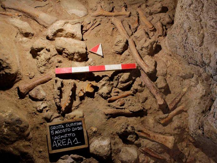Bij deze nieuwe techniek komen geen botten, tanden of andere skeletresten - die eerder zeldzaam zijn - van uitgestorven mensensoorten te pas (archiefbeeld).