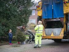 Wageningers leveren meer kerstbomen in dan verwacht