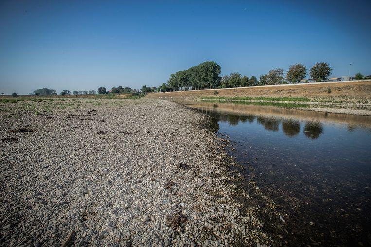 Tijdens de droogte in de zomer van 2018 is de Maas nog maar  enkele meters breed. Beeld Foto ANP