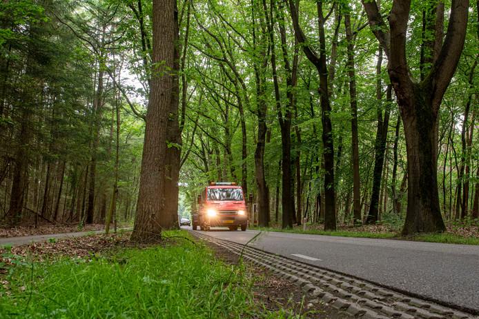 Om de verkeersveiligheid van de Rucphenseweg te vergroten, kapt de provincie bij een opknapbeurt van de weg 400 bomen. Begrijpelijk, vindt Zundert. Maar als er een kans is dat een boom kan blijven staan, zonder dat daarmee de veiligheid in het geding komt, strijdt Zundert voor behoud