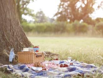 Drie zondagen in augustus 'Picknick Magique' in drie Ninoofse deelgemeenten