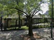 Une fillette de 3 ans agressée sexuellement par un autre enfant dans une école à Molenbeek