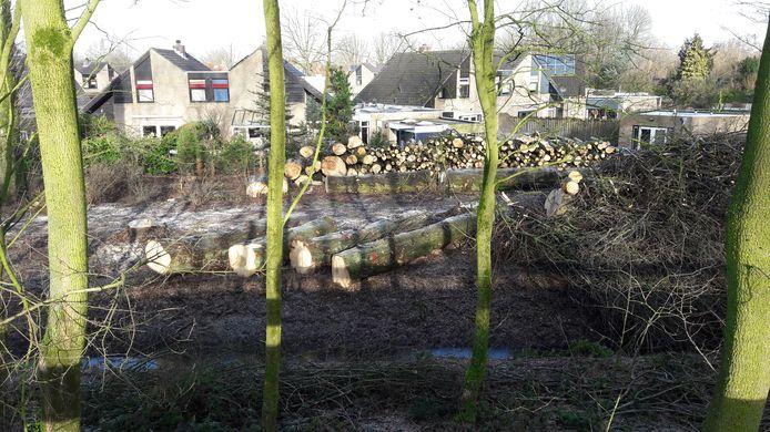 De rooiwerkzaamheden vonden plaats aan de Vinkenslag, naast de Hakvoortseweg.