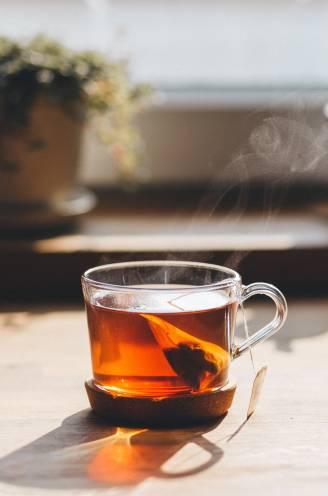 Hoe kies je de geschikte thee, zet je de perfecte kop en pimp je de drank tot een icetea? Theesommelier Veerle legt het uit