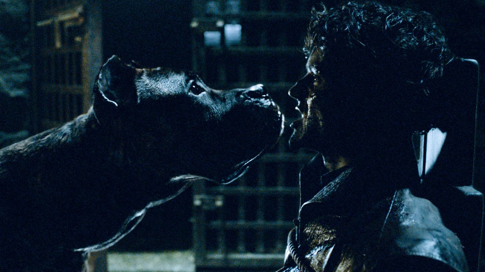 """Iwan Rheon jouait le rôle de Ramsay Bolton dans """"Game of Thrones""""."""
