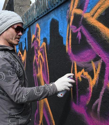 Graffiti-artiesten zetten hun stempel op Bossche Ridderspoorstraat