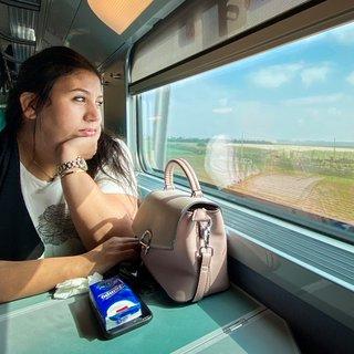 Brengt de eerste TGV van Afrika Marokko naar de moderniteit?
